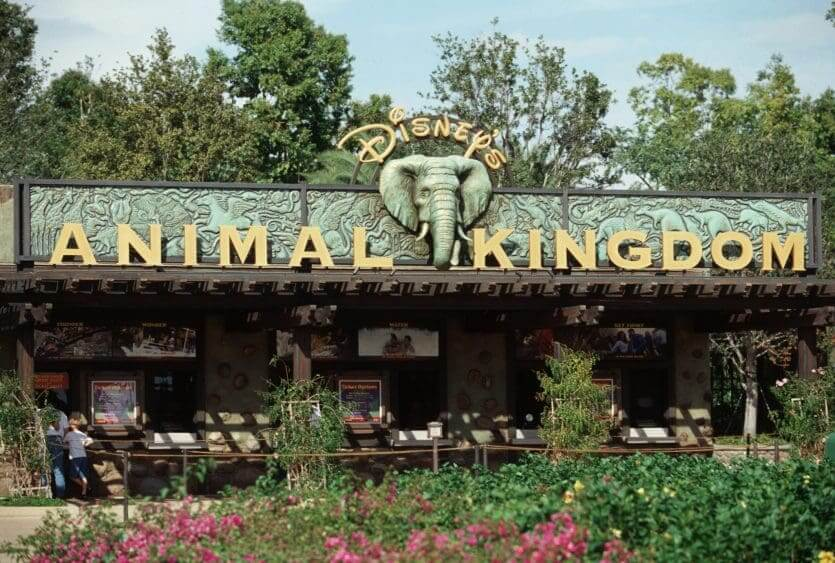 Parque Animal Kingdom da Disney Orlando: Oasis