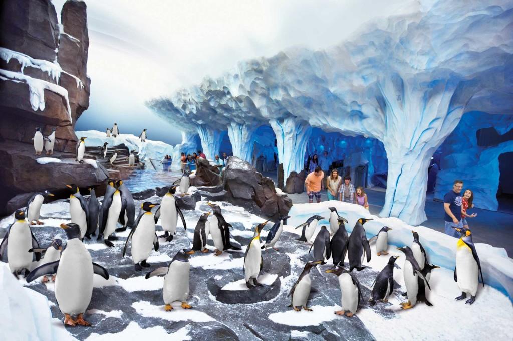 Parque SeaWorld em Orlando: Antarctica: Empire of the Penguin