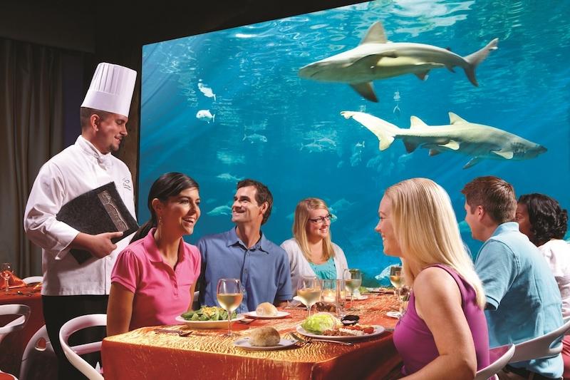 Parque SeaWorld em Orlando: aquário no Sharks Underwater Grill and Bar