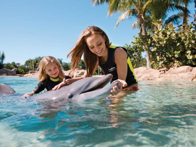 Ingressos e combos do Discovery Cove Orlando