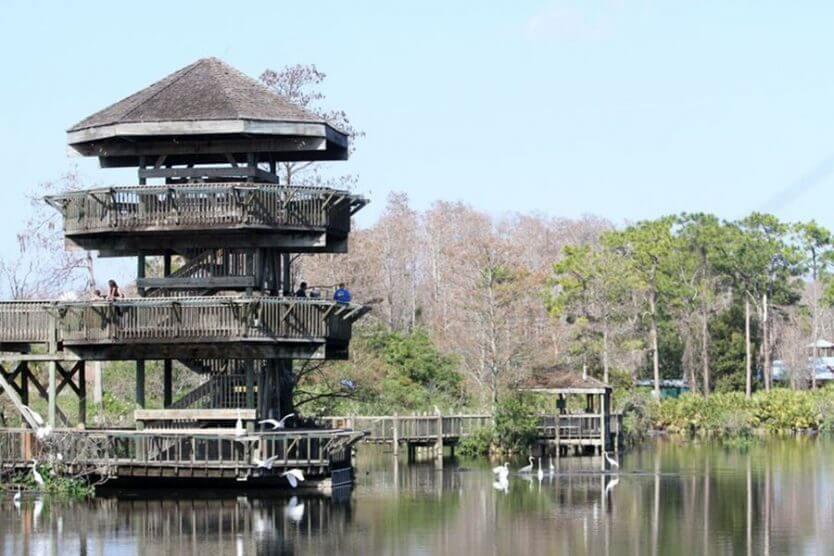 Parque dos Jacarés Gatorland em Orlando: vista