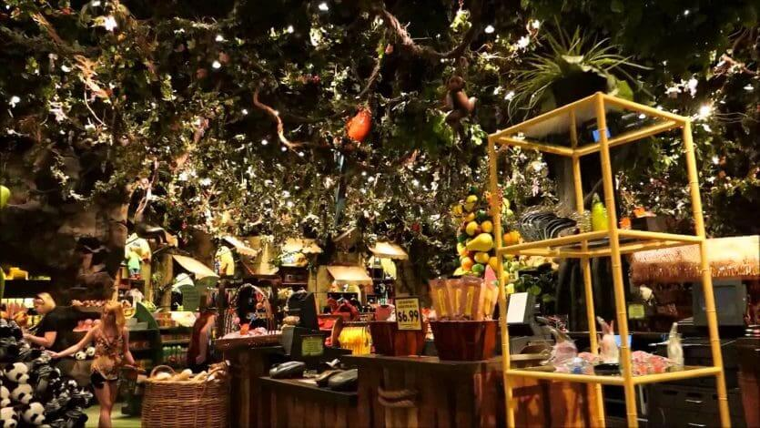 7 restaurantes para a família em Orlando: lojinha do Rainforest Cafe