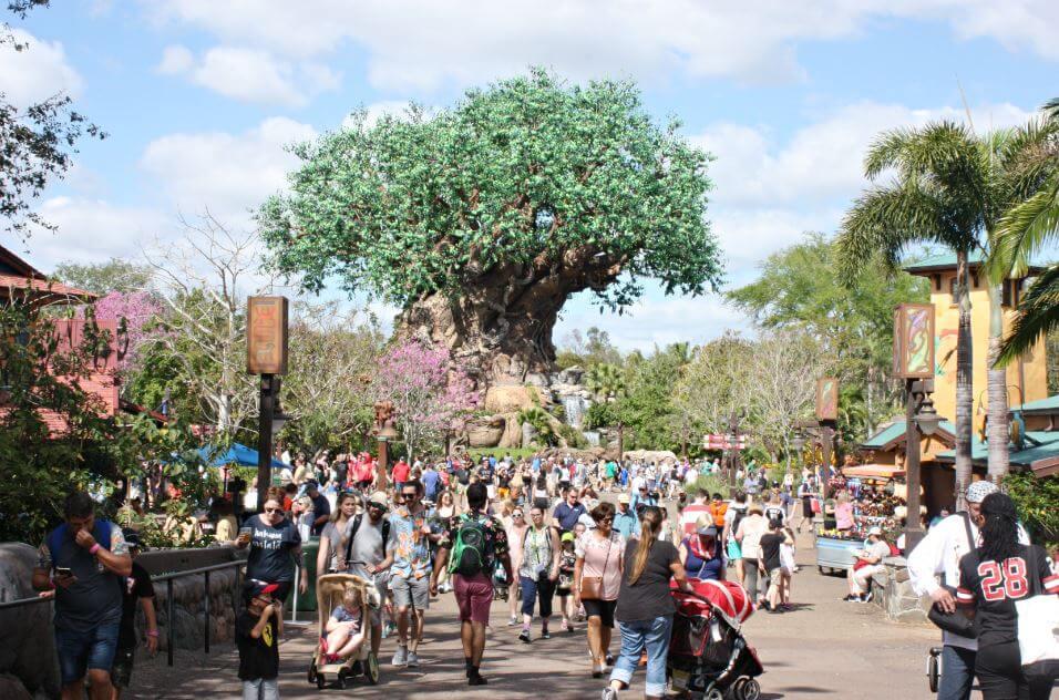 Orlando e Disney no mês de março