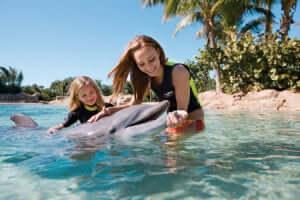 Roteiro 8 dias em Orlando: Parque Discovery Cove