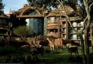 7 hotéis de luxo em Orlando: Disney's Animal Kingdom Lodge
