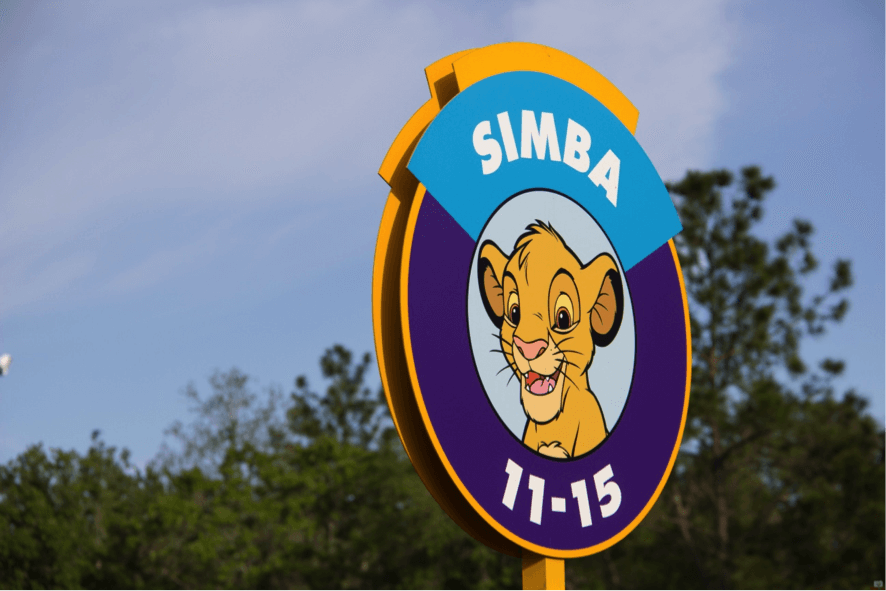 5 Dicas para não passar aperto em Orlando 3
