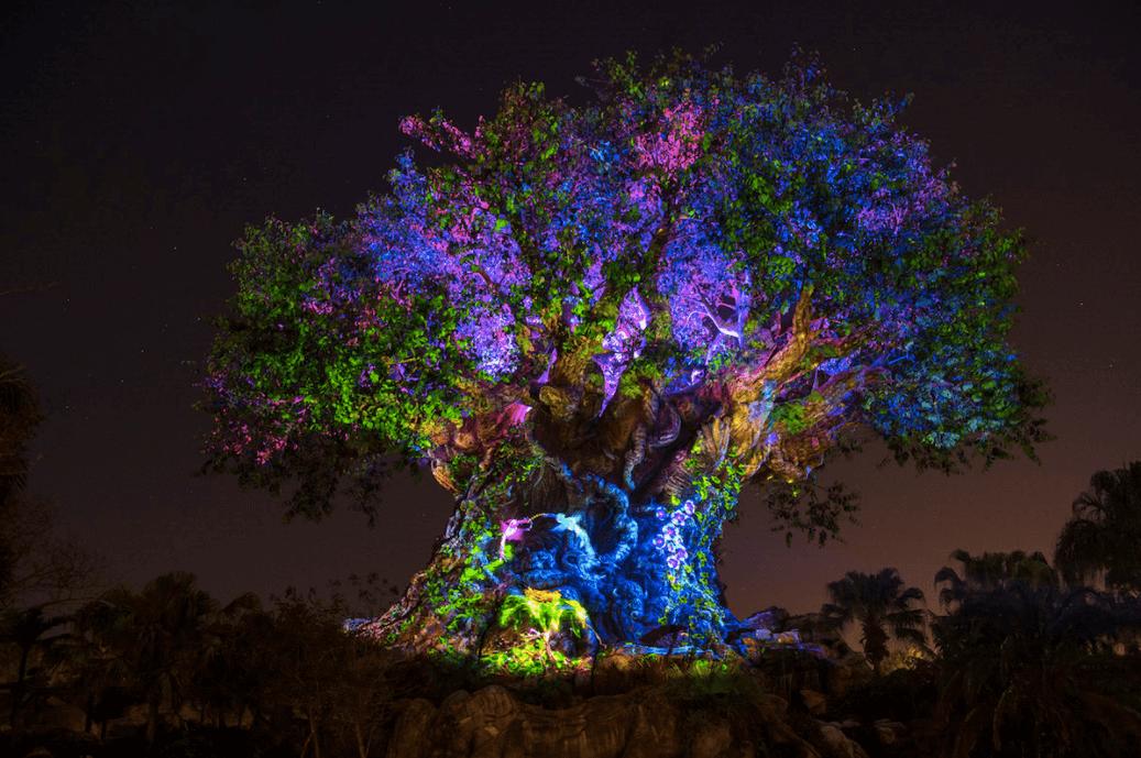 Shows, paradas e apresentações no parque Disney Animal Kingdom Orlando: Tree of Life - Árvore da Vida