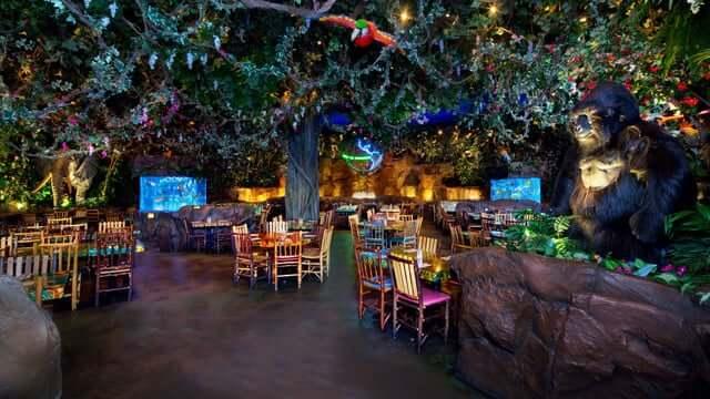 7 restaurantes para a família em Orlando: Rainforest Cafe