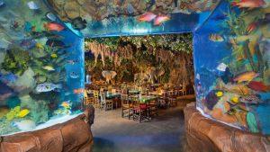 Restaurante Rainforest Cafe Orlando