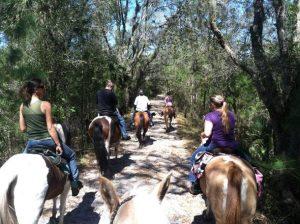 7 esportes e atividades ao ar livre em Orlando: passear a cavalo em Orlando