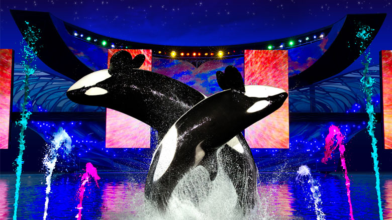 Summer Nights do Parque SeaWorld Orlando 3