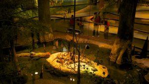 Museu Orlando Science Center