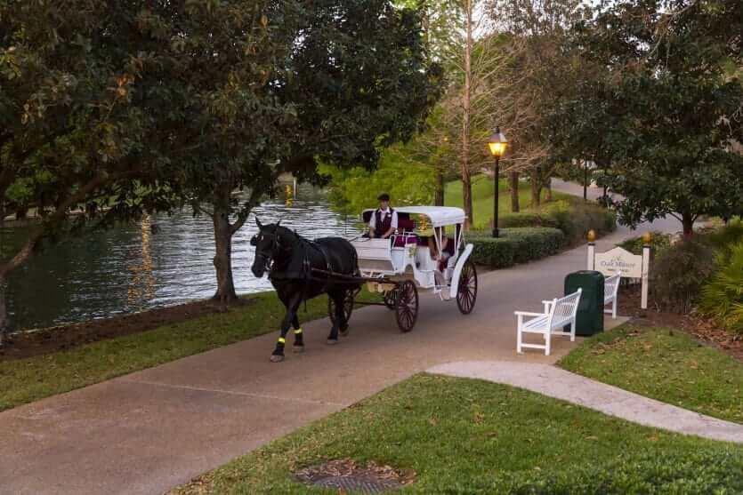 Disney's Port Orleans Resort - Riverside: passeio de carruagem