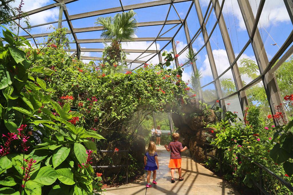 Pontos turísticos em Boca Raton: Butterfly World