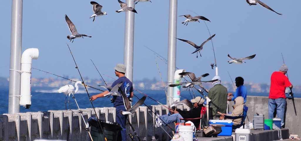 O que fazer em São Petersburgo: Skyway Fishing Pier State Park