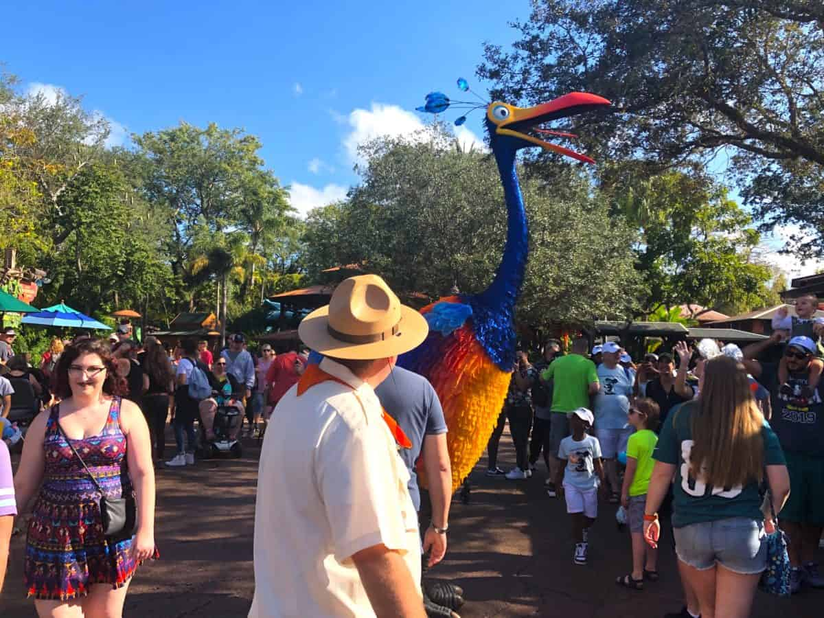 "Encontre Kevin de ""Up! Altas Aventuras"" no Disney's Animal Kingdom em Orlando: Discovery Island"