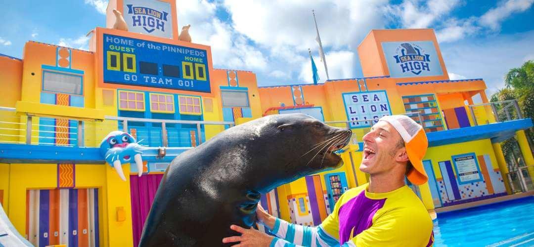 Parque SeaWorld em Orlando: Sea Lion High: The New Class