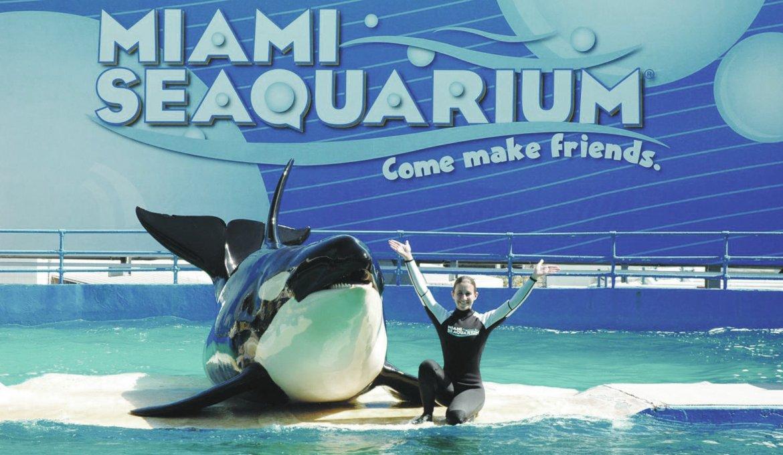 Aquário Miami Seaquarium