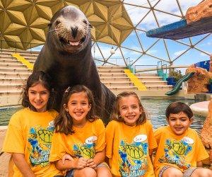 Aquário Miami Seaquarium: crianças