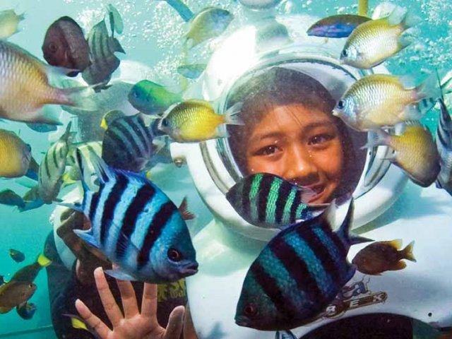 Mergulho Sea Trek no Miami Seaquarium