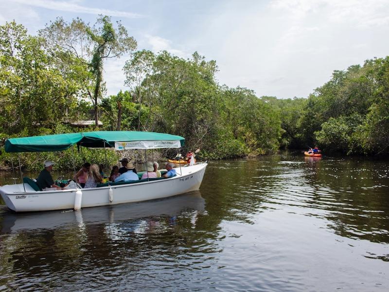 O que fazer em Naples: cruzeiro ecológico em Conservancy of Southwest Florida