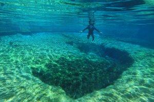 Blue Spring State Park próximo a Orlando: mergulho