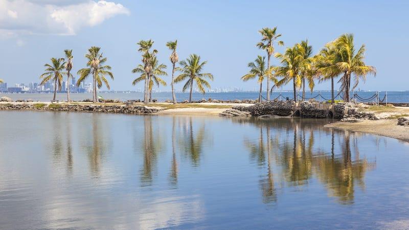 Matheson Hammock Park em Coral Gables: orla da praia