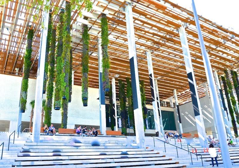 Museu de Arte de Miami: entrada